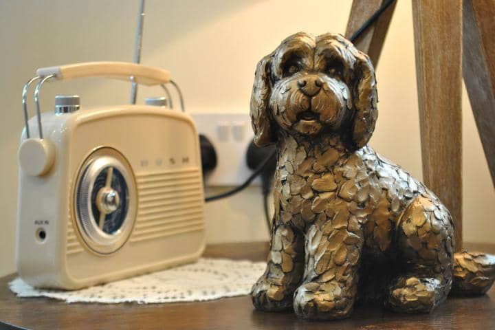 Dog and Radio