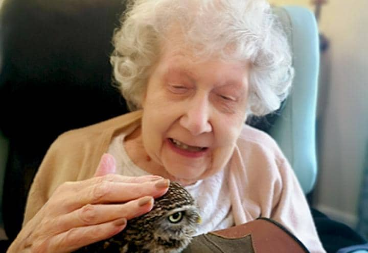 Resident handling the little owl.